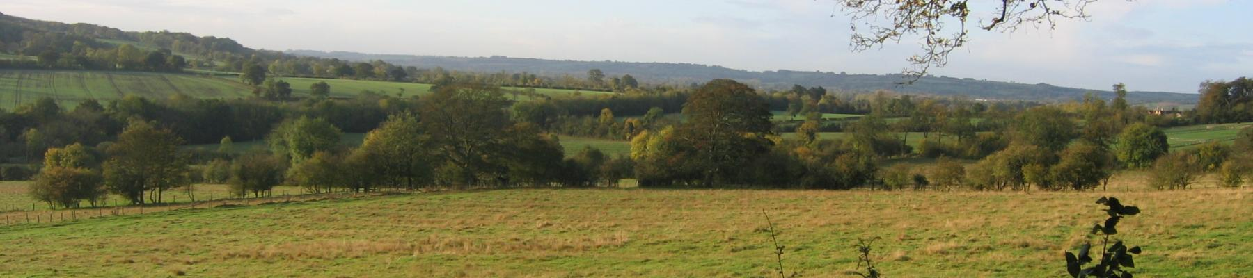 View from Park Farm